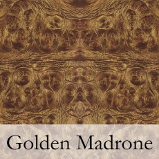 Golden Madrone