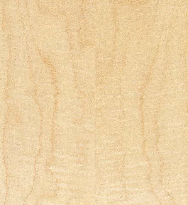 Riegelahorn