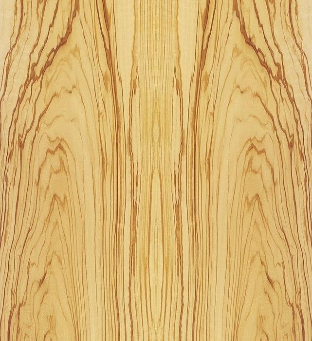 olivenbaum Gerber Humidor