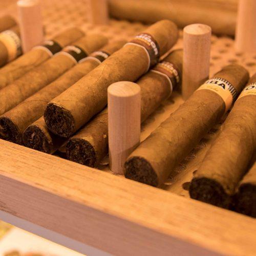CigarArt C-Flex GERBER Humidor